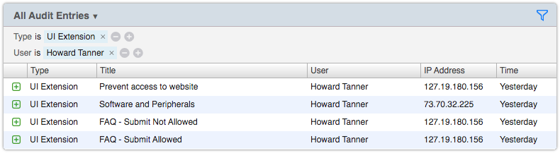 Audit Entries view filtered by Type and User
