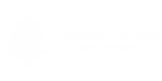 belgian ict logo