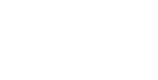 zfv logo